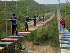 游乐设施施工造价 30米步步惊心游乐设备 步步惊心吊桥价格