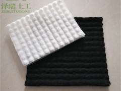 珠海HDPE高分子排水异形片/虹吸系统原理