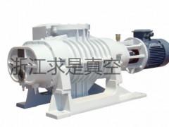 ZJP-1200罗茨真空泵